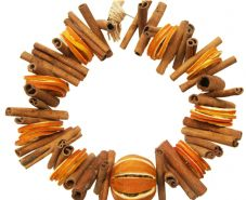 Cinnamon and Orange Circle